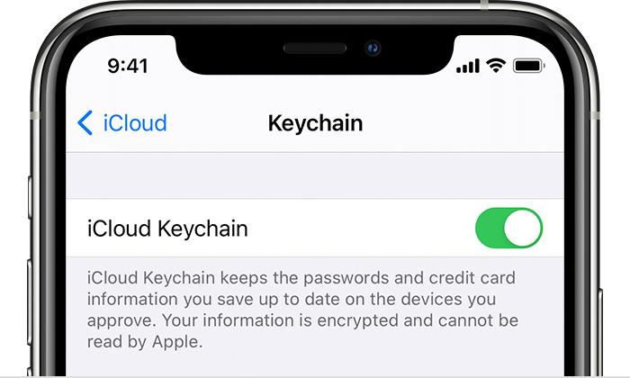 https://www.macfreak.nl/modules/news/images/zArt.iOS14-iPhone11ProSettingsAppleID-iCloudKeychain.jpg